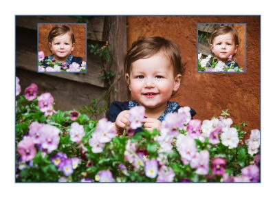 12 months old enjoying flowers in this photo session