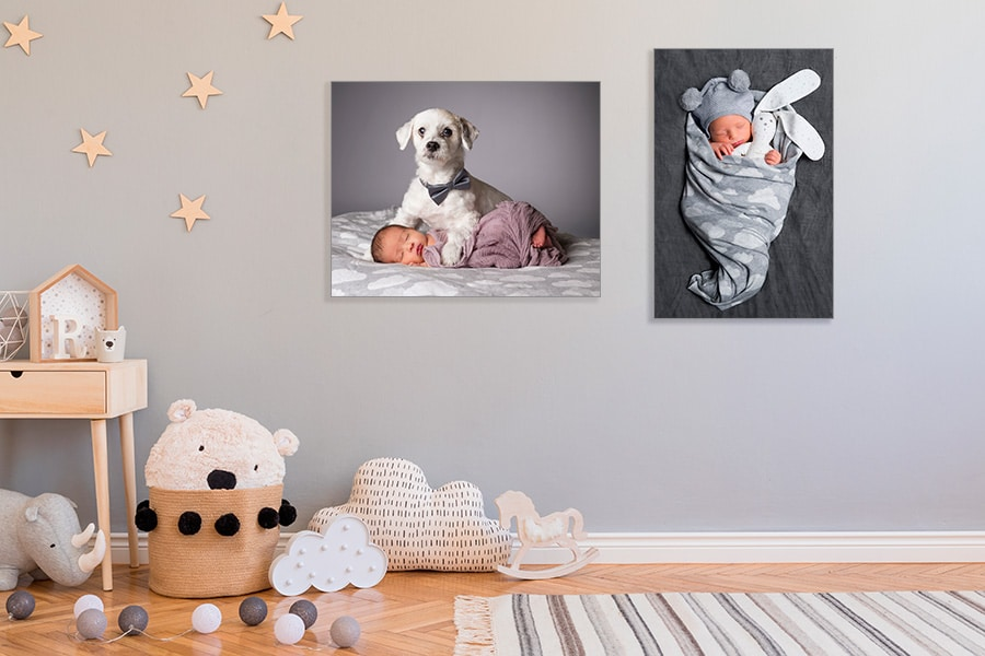 soft newborn portraits for the wall